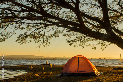 Poster Camping orange camping tent under the tree at sunrise or sunset background