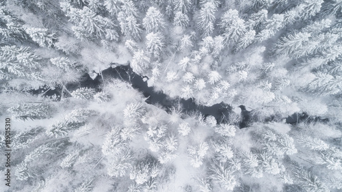 Recess Fitting Forest river Aerial view of the forest and river at winter. The trees are covered with snow