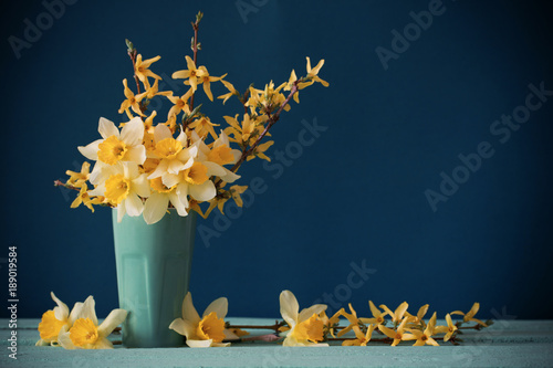 daffodils in vase on blue background