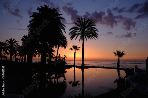 Fototapety, obrazy: Sunset with palms on the beach