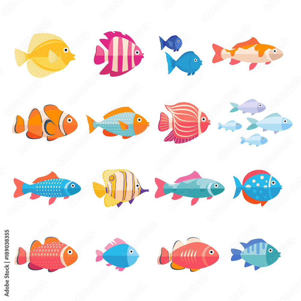 Fototapeta Colorful aquarium fish set vector isolated. Tropical fishes collection