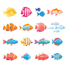 Colorful Aquarium Fish Set Vec...