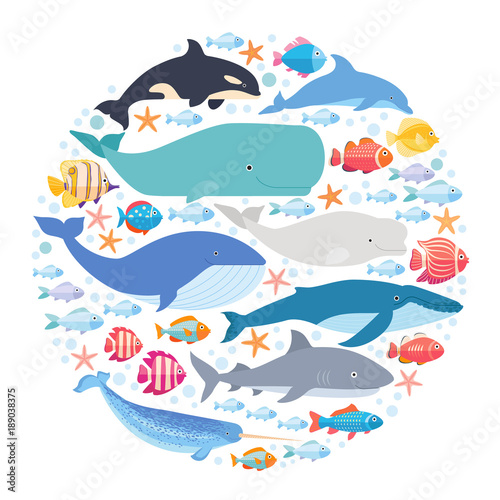 Leinwand Poster Marine mammals and fishes set in circle