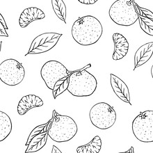 Hand Drawn Vector Black And White Outline Tangerine Seamless Pattern
