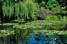 Giardini Di Casa Monet A Giver...