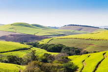 A View Of The Valley Of A Thousand Hills Near Durban, South Africa