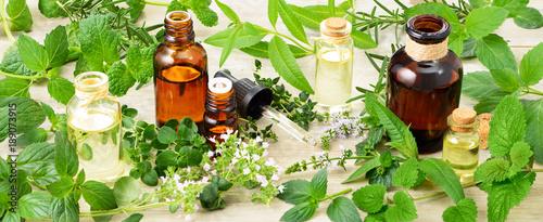 Fototapeta fresh herbs, flowers and massage oil on the wooden board obraz