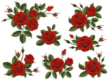 Red Rose Boutonniere. Set For Floral Design Of A Greeting, Wedding Or Invitation Card. Bouquet Of Decorative Garden Flower. Bud, Petals And Leaves Of Plant.
