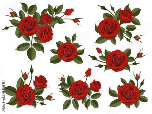 Boutonniere z czerwoną różą. Zestaw kwiatowy wzór karty okolicznościowej, ślubnej lub zaproszenia. Bukiet dekoracyjnych kwiatów ogrodowych. Pączek, płatki i liście rośliny.