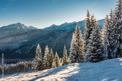 Poster Bergen Winter mountain landscape, Tatra mountains, morning