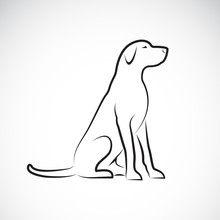 Vector Of A Labrador Retriever...