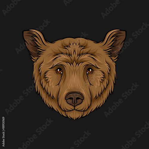 Fototapeta Head of brown bear, face of wild animal hand drawn vector Illustration obraz na płótnie