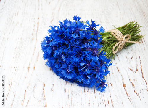 Tuinposter Lavendel blue cornflowers