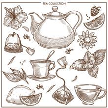 Tea Collection Vector Sketch I...