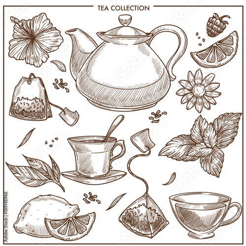Fotografie, Obraz Tea collection vector sketch icons of cups, teapot and teabags or herbal flavori