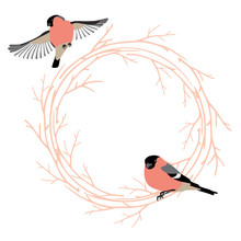 Valentine's Day Card With Frame From Tree Branches And Birds. Soft Pink Color Frame For Valentines Design. Vector Illustration Isolated On White Background