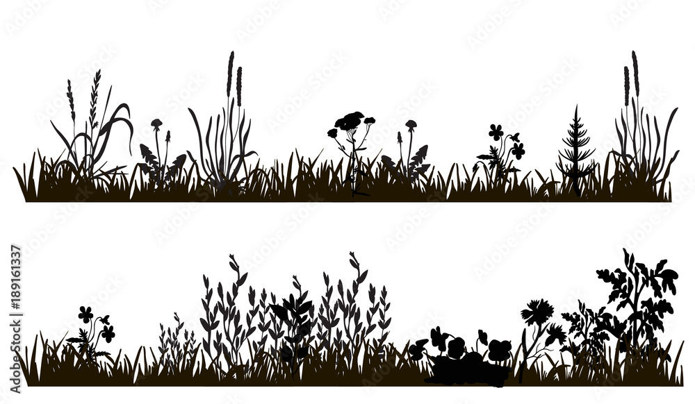 Fototapety, obrazy: vector isolated silhouette of grass and plants, isolated on white background