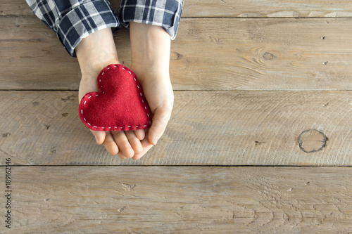Red heart in hands Canvas Print