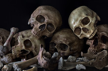 Pile Of Skulls And Bones On Bl...