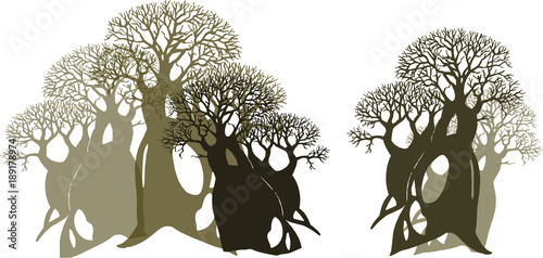 The forest of baobabs. Adansonia digitata Canvas-taulu
