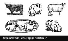 Vintage Farm Animals Collection