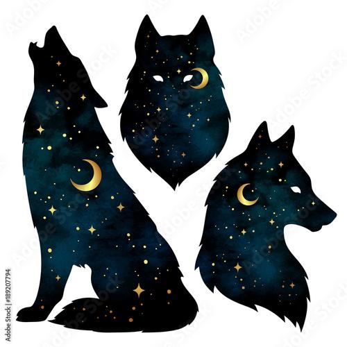 Naklejka premium Zestaw sylwetki wilka z półksiężycem i gwiazdami na białym tle. Ilustracja wektorowa projekt naklejki, druku lub tatuażu. Pogański totem, wiccanowska sztuka chowańca
