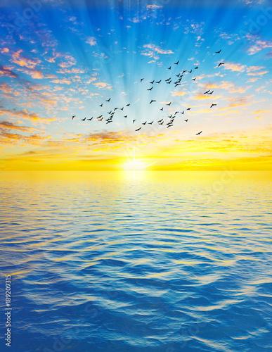 Poster Mer / Ocean paisaje vertical del amanecer en el oceano