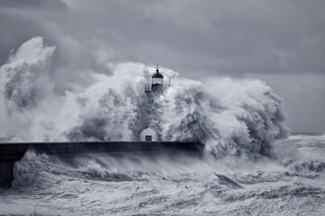 FototapetaStormy big waves