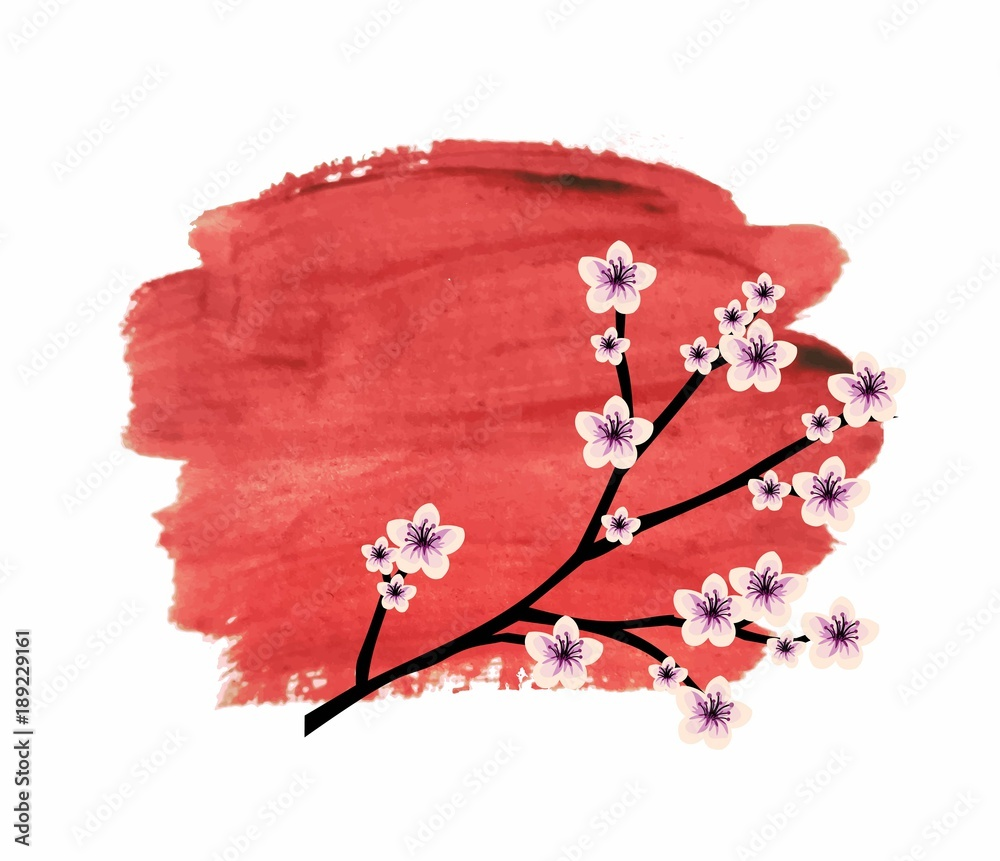 Beautiful illustration of Japanese cherry blossom over the red watercolor background vector