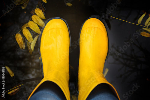 Yellow rubber saogi in autumn puddle.Osenny background