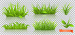 Spring, green grass. 3d realistic vector icon set