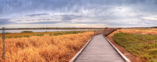 Boardwalk along the wetland and marsh at the Myakka River State Park Canvas Print