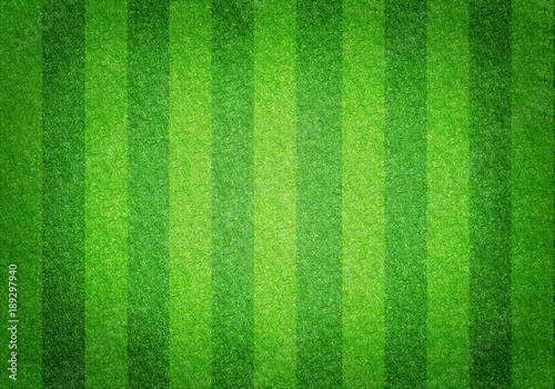 Fotografie, Obraz  Soccer football grass field