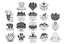 Vintage Forest Stamps Collection