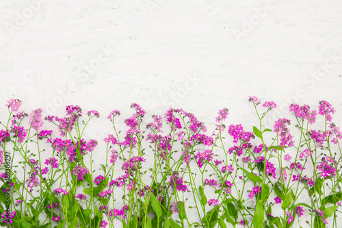 Beautiful Rustic Floral Background