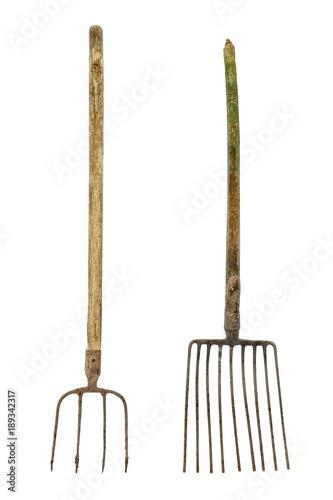 Fotografia, Obraz Old dirty pitchforks isolated on white background.