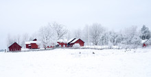 Farm Barn In A Cold Winter Lan...
