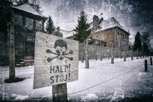Auschwitz concentration camp Wallpaper Mural