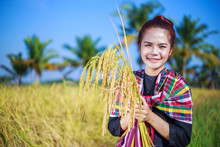 Farmer Woman Holding Rice In F...
