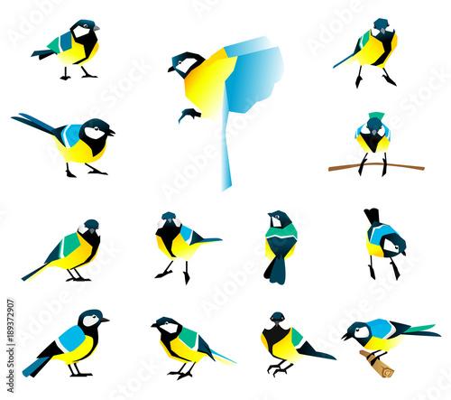 Spoed Foto op Canvas Vogels, bijen Flat icons of titmouse set. Winter birds in a flat style.