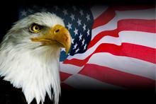 American Symbol - USA Flag Wit...