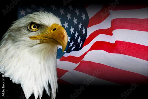 Deurstickers Eagle American symbol - USA flag with eagle