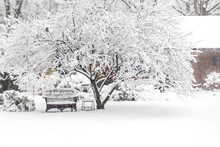 Outdoor Furniture Covered With Snow