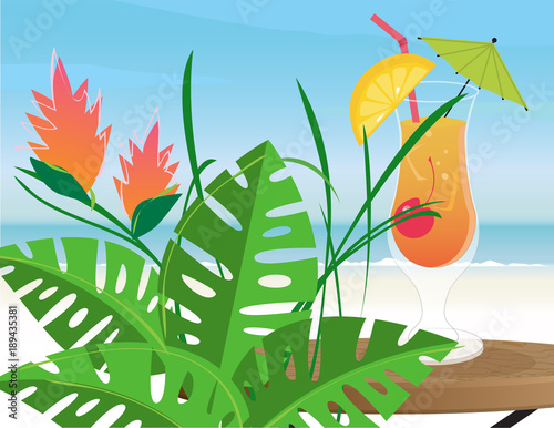 Tropical plant and cocktail on the beach © Diana Rich