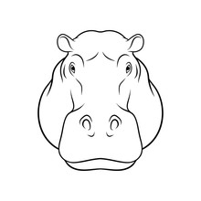 Sketch Of Hippopotamus Head, P...