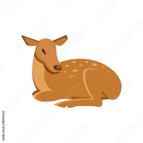 Spotted fallow roe deer lying, wild animal cartoon vector Illustration Wall mural