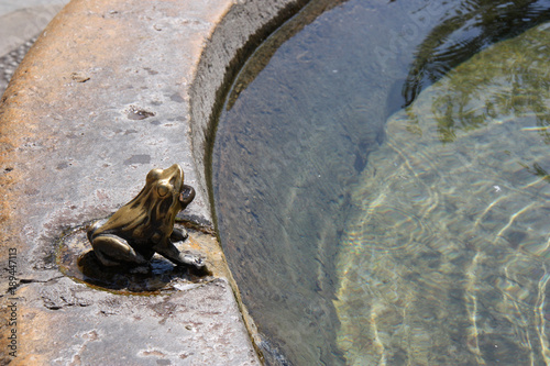 Poster Fontaine Grenouille de fontaine en bronze