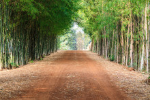 Dirt Road In The Countryside A...