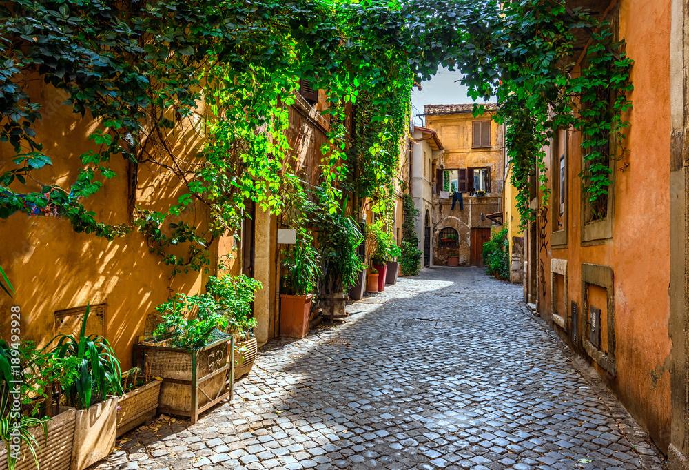 Fototapeta Old street in Trastevere, Rome, Italy.