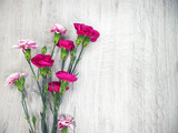 Fototapeta Kwiaty - Flowers of carnations on a wooden light background